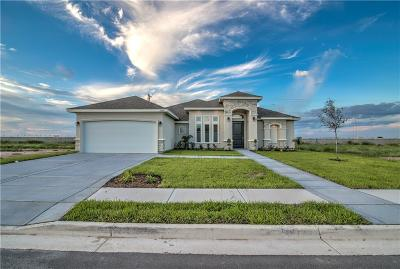 McAllen Single Family Home For Sale: 3604 St Honore Drive