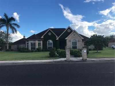 Weslaco Single Family Home For Sale: 909 Anthony Street