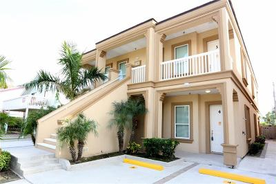 South Padre Island Condo/Townhouse For Sale: 125 Saturn Lane #D
