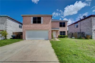 Edinburg Single Family Home For Sale: 3300 Mallory Drive
