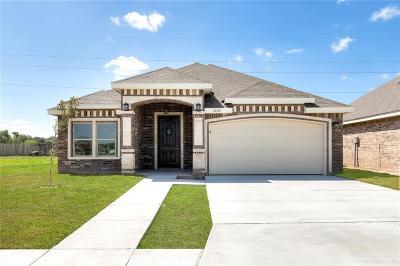 Alamo Single Family Home For Sale: 1123 Palazzo Drive