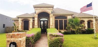 Edinburg Single Family Home For Sale: 2909 Linva Avenue