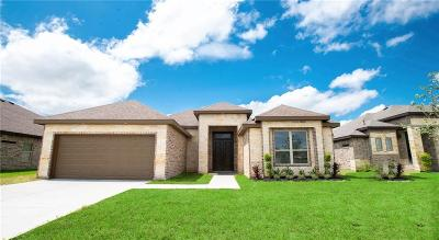 Harlingen Single Family Home For Sale: 1001 Clearview Drive