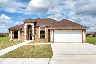 Weslaco Single Family Home For Sale: 1917 Ginger Avenue