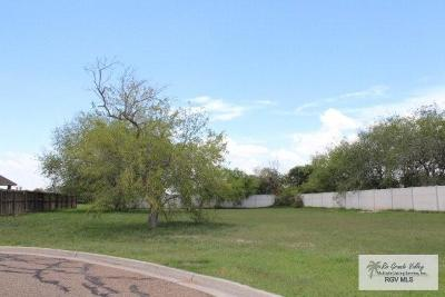 Harlingen Residential Lots & Land For Sale: Lot 13 Weighost Street