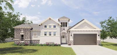 McAllen Single Family Home For Sale: 4433 Caddo Lane