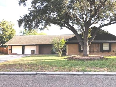 Edinburg Single Family Home For Sale: 1017 W Ebony Drive