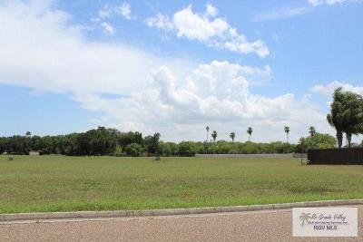 Harlingen Residential Lots & Land For Sale: Lot # 30 Remington Boulevard