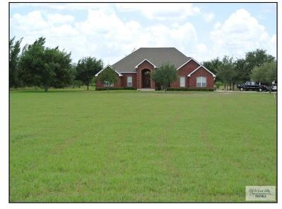 Harlingen Single Family Home For Sale: 21994 Briggs Coleman Road