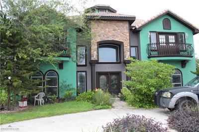 Edinburg Single Family Home For Sale: 630 Studio Lane
