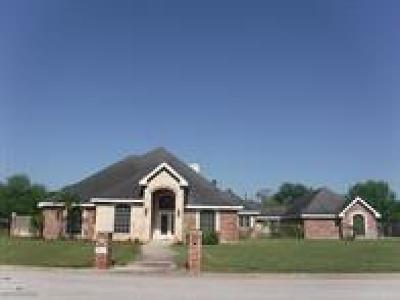 Weslaco Single Family Home For Sale: 2613 Woodland Drive
