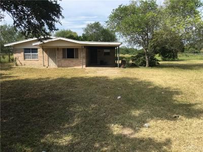 Edinburg Single Family Home For Sale: 9001 N Us Highway Business 281 Highway