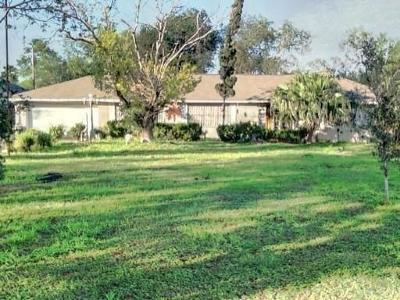 Edinburg Single Family Home For Sale: 5415 E Texas Road