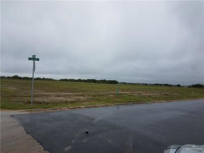 San Juan Residential Lots & Land For Sale: 702 Fitzgerald Street