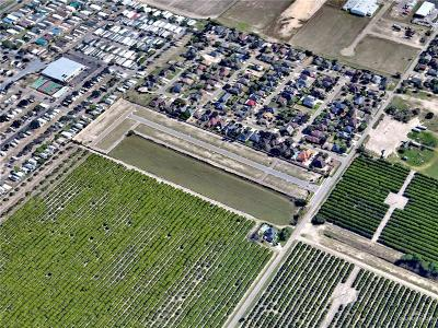 Pharr Residential Lots & Land For Sale: 0000 Minnesota Road