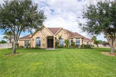 Mercedes Single Family Home For Sale: 2181 Camino De Verdad