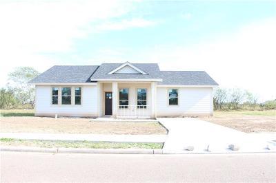 Mercedes Single Family Home For Sale: 1206 Esperanza Street