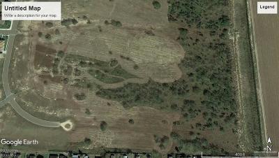 Weslaco Residential Lots & Land For Sale: 00 N Fm 1015 Road