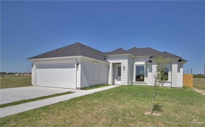 Alamo Single Family Home For Sale: 1345 Deluxe Street
