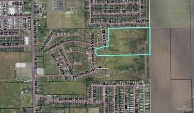Weslaco Residential Lots & Land For Sale: Mile 8 Road