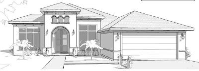 Pharr Single Family Home For Sale: 802 W Arapaho Avenue