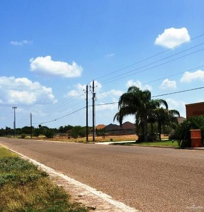 Weslaco Residential Lots & Land For Sale: 3723 S Border Avenue