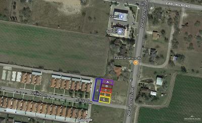 San Juan Residential Lots & Land For Sale: 3510 N Raul Longoria Road