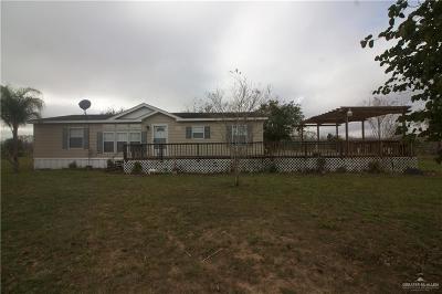Edinburg Single Family Home For Sale: 10117 Cibolo Drive