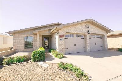 Harlingen Single Family Home For Sale: 4169 N Missouri Street