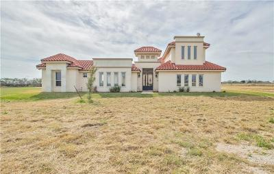 Edinburg Single Family Home For Sale: 2608 Horizon Trail