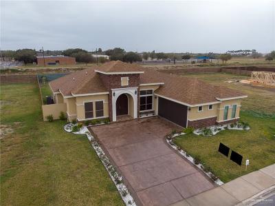Edinburg Single Family Home For Sale: 2611 Drakensburg Avenue