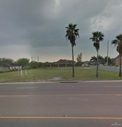 San Juan Residential Lots & Land For Sale: 4810 N Raul Longoria Road