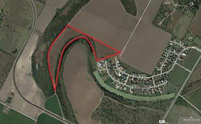 Harlingen Residential Lots & Land For Sale: 24ac