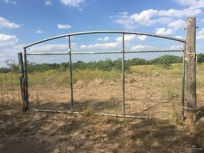 Weslaco Residential Lots & Land For Sale: 00 E Mile 12