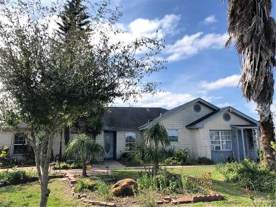 Cameron County Single Family Home For Sale: 35228 Fm 106
