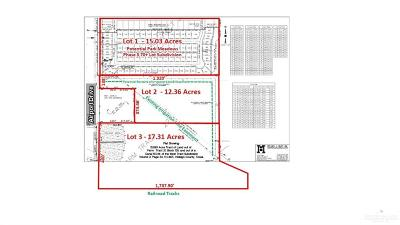 Weslaco Residential Lots & Land For Sale: Airport Drive