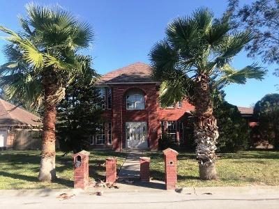 Cameron County Single Family Home For Sale: 1074 E San Marcelo Boulevard