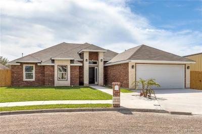 San Juan Single Family Home For Sale: 1100 E 7th Street
