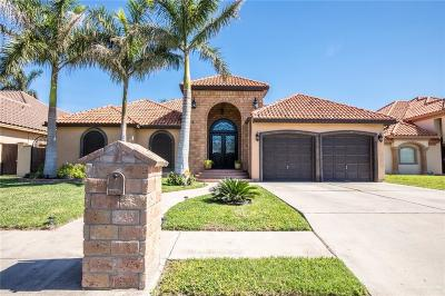 McAllen TX Single Family Home For Sale: $349,000