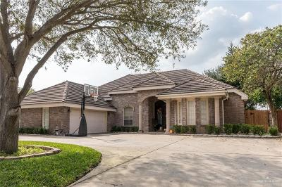 Edinburg Single Family Home For Sale: 2513 Kings Drive
