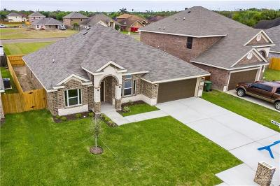 Weslaco Single Family Home For Sale: 2205 Water Willow Drive