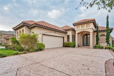 McAllen Single Family Home For Sale: 4100 Tyler Avenue