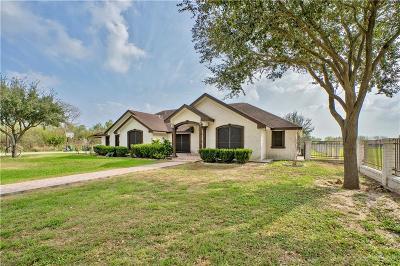 Alamo Single Family Home For Sale: 403 E Nebraska Road