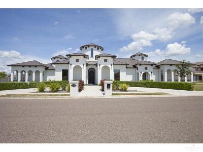 McAllen Single Family Home For Sale: 10700 N 26th Street