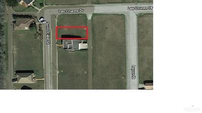 Weslaco Residential Lots & Land For Sale: 3809 Santo Cielo Street