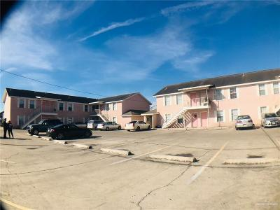 Edinburg Multi Family Home For Sale: 303 Gastel Circle