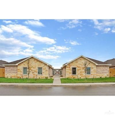 Edinburg Multi Family Home For Sale: 419 Carlisle Avenue