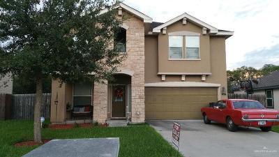 Mercedes Single Family Home For Sale: 450 Dyanez Street #LOT 32