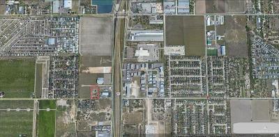 Pharr Residential Lots & Land For Sale: Minnesota Road