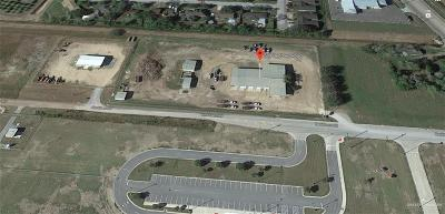 Cameron County Commercial For Sale: 509 N Beddoes Road